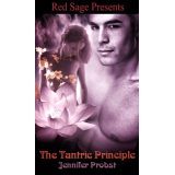 The Tantric Principle