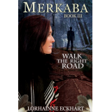 Merkaba: (Walk the Right Road Series ~ Danger ~ Deception ~ Devotion)