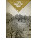 2000 Deciduous Trees: Memories of a Zine
