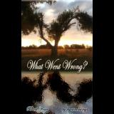 What Went Wrong? Book 4