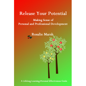 Release Your Potential:Making Sense of Personal and Professional Development