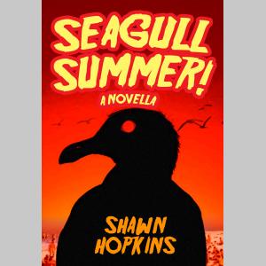 Seagull Summer: A Novella