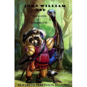 John William and the Bandits of Basswood (John William's Adventure Series)