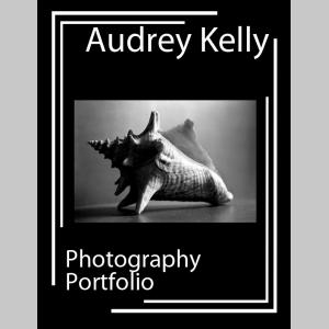 Audrey Kelly Portfolio