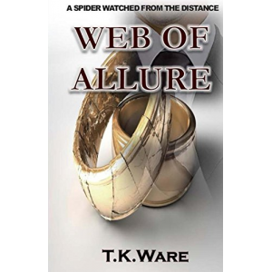 Web of Allure: A House Divided Cannot Stand (WEB OF ALLURE SAGA Book 1)