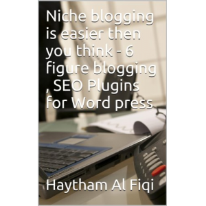 Niche blogging is easier then you think - 6 figure blogging , SEO Plugins for Word press