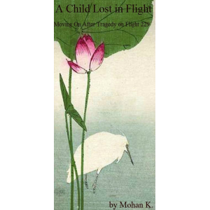 A Child Lost in Flight : Moving on after tragedy on Flight 229