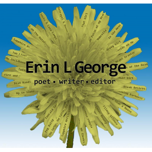 The Work of Author Erin L George
