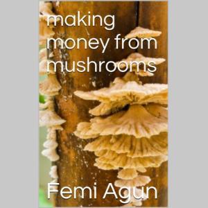 Making Money From Mushrooms