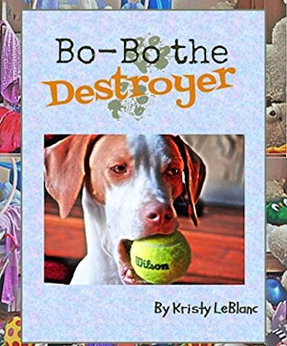 Bo-Bo the Destroyer (The Mr. Bo-Bo Picture Book Series 2)