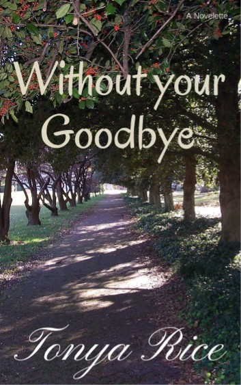 Without Your Goodbye: A Novelette