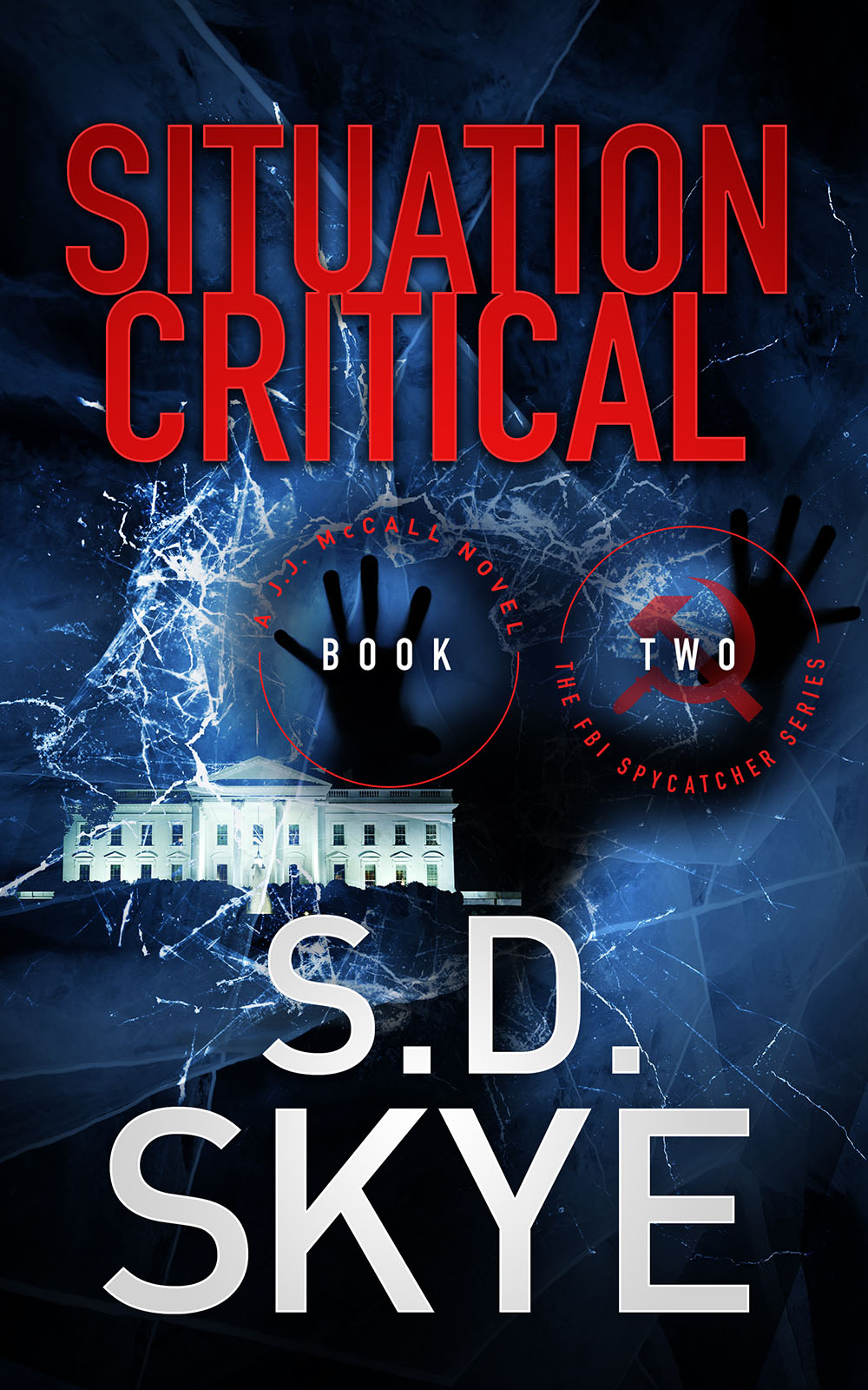 SITUATION CRITICAL (A J.J. MCCALL NOVEL #2)
