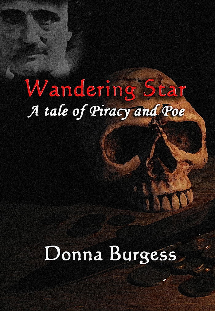 Wandering Star: A Tale of Piracy and Poe