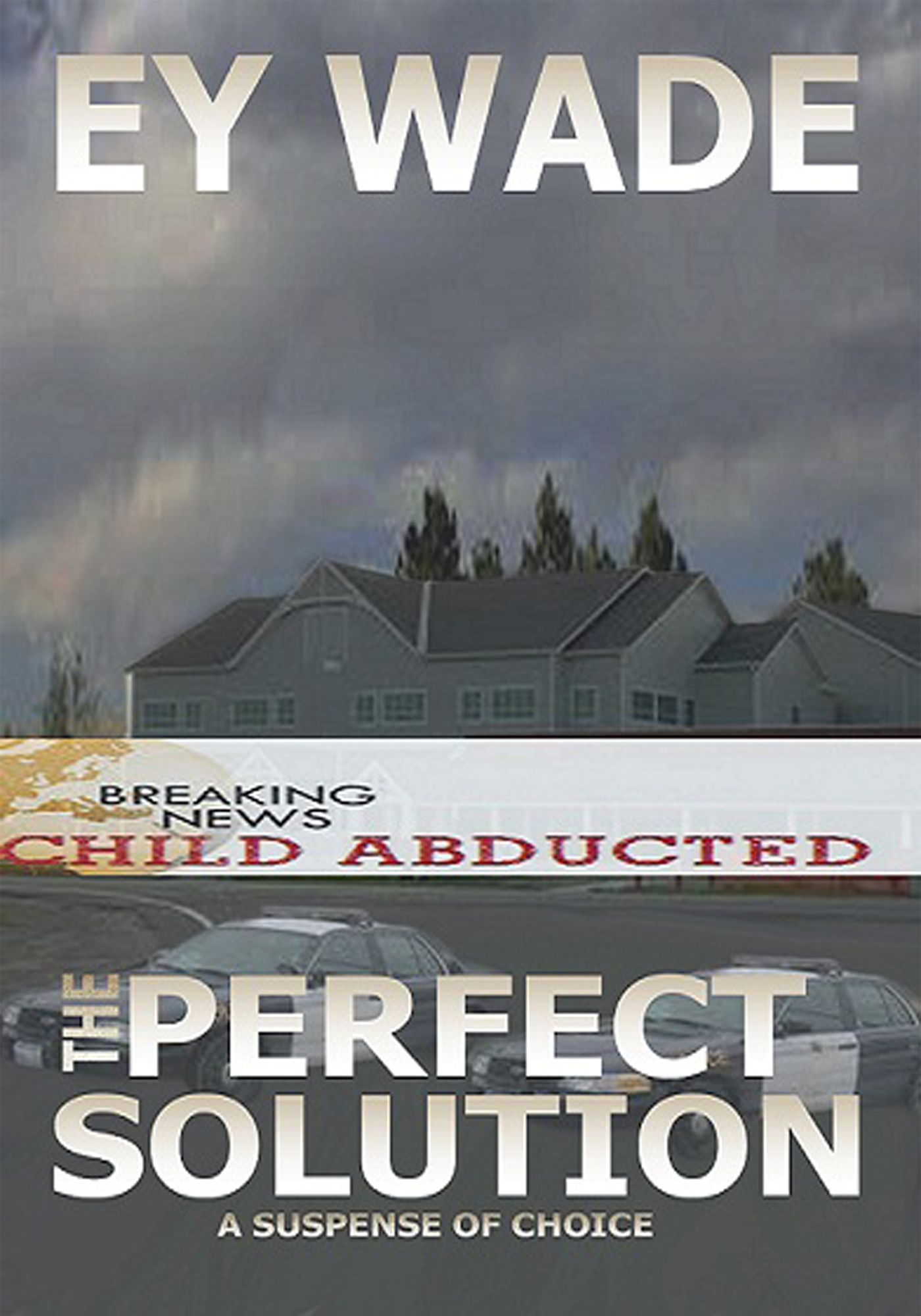 The Perfect Solution - A Suspense in Choices