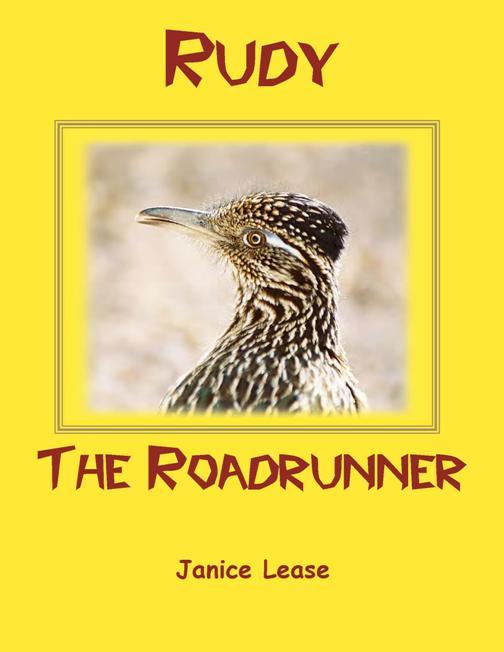 Rudy The Roadrunner