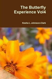 The Butterfly Experience: A Collection of Poems vol4