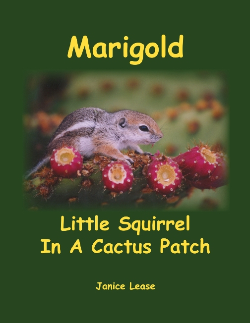 Marigold Little Squirrel In A Cactus Patch