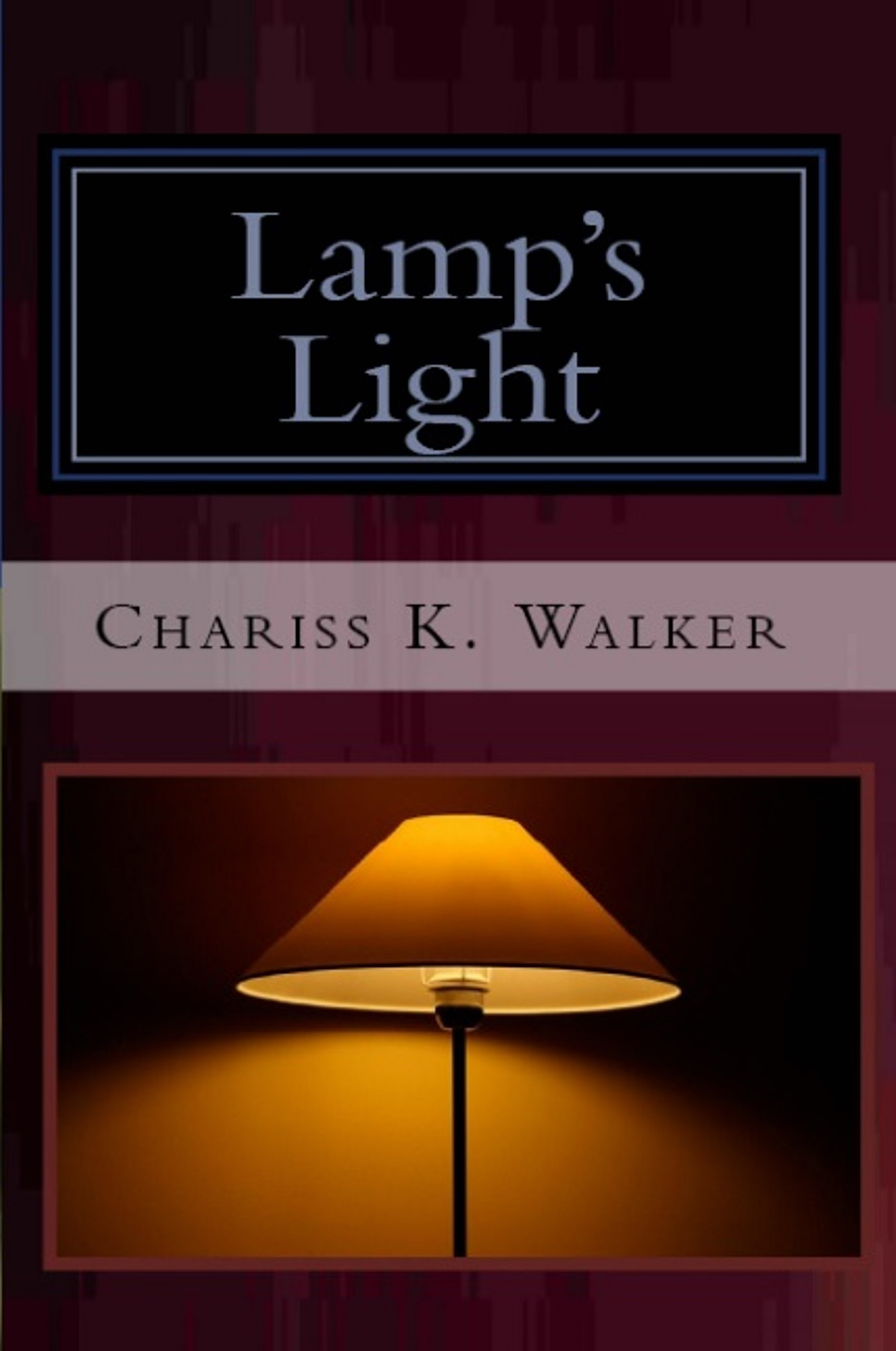 Lamp's Light (The Vision Chronicles Book 7)