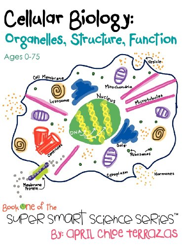 Cellular Biology: Organelles, Structure, Function