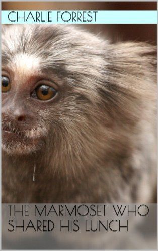 The marmoset who shared his lunch