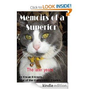 Memoirs of a Superior.