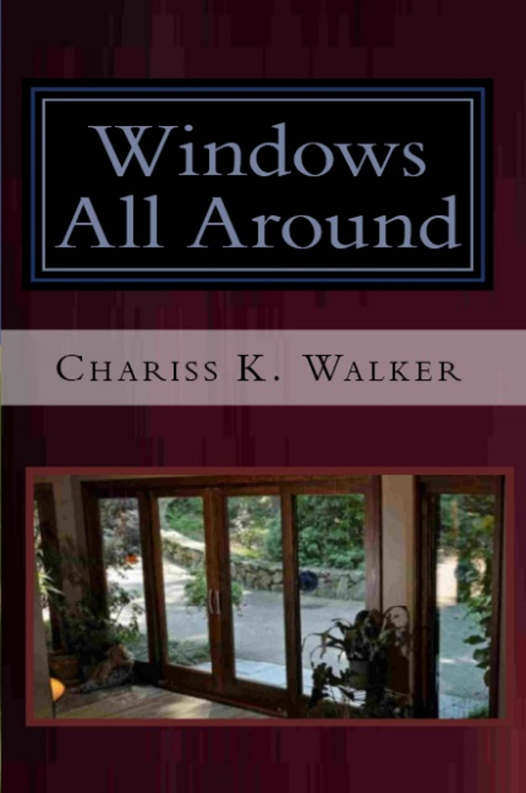 Windows All Around (The Vision Chronicles Book 4)