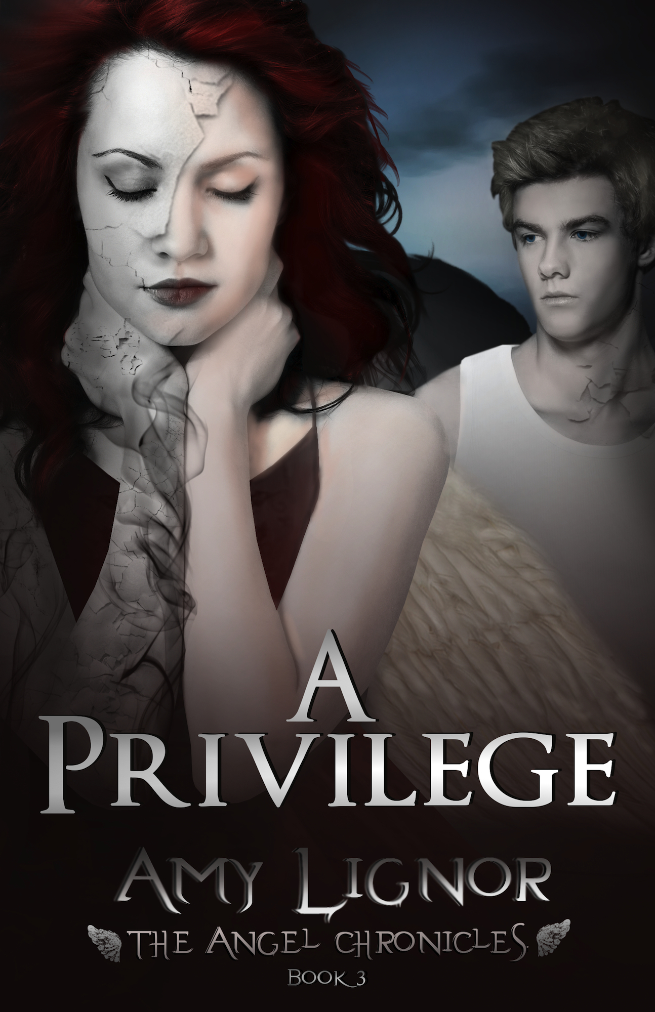 A Privilege: The Angel Chronicles, Book 3