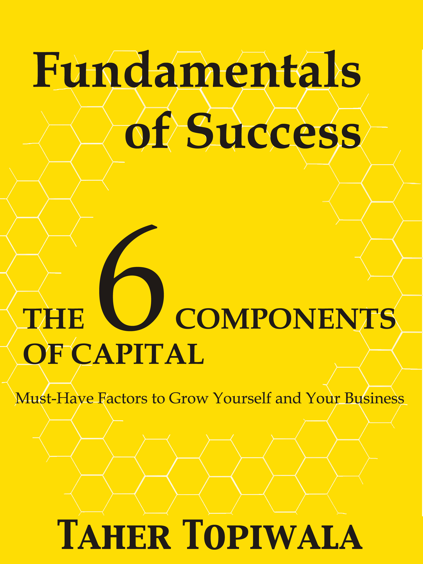 Fundamentals of Success: 6 Components of Capital
