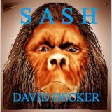 David Decker